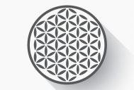 Human Circles . net